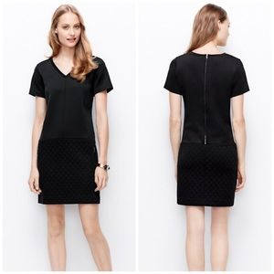 Ann Taylor Quilted Black Shift Dress
